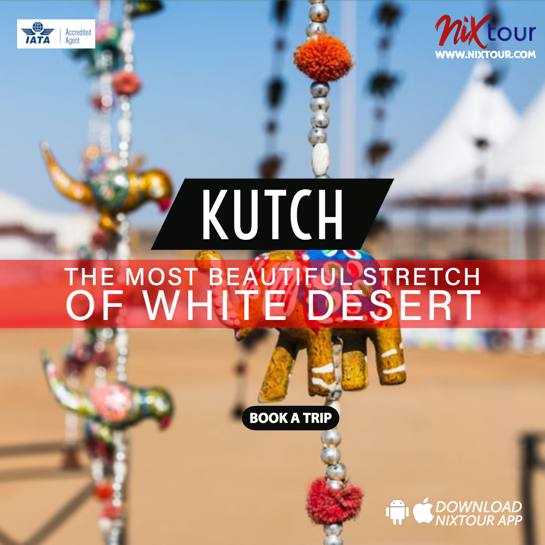 Kutch | Fantastic White Desert Safari